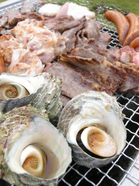 瀬戸内海の新鮮な魚介やお肉(イメージ)