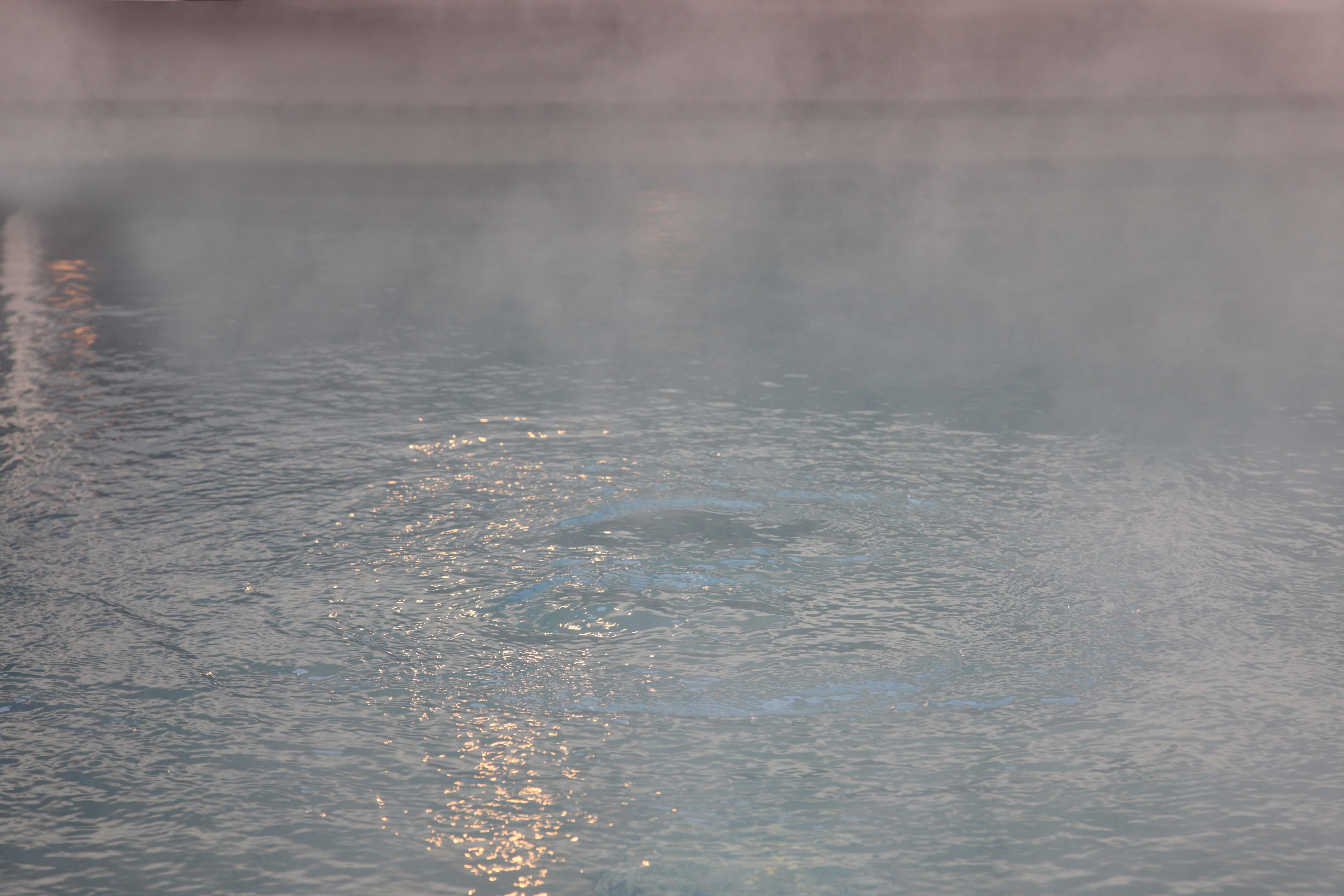 平日無料バスで行き帰りも楽ちん!熊本うまいもんフェア開催中の神勝寺温泉 昭和の湯