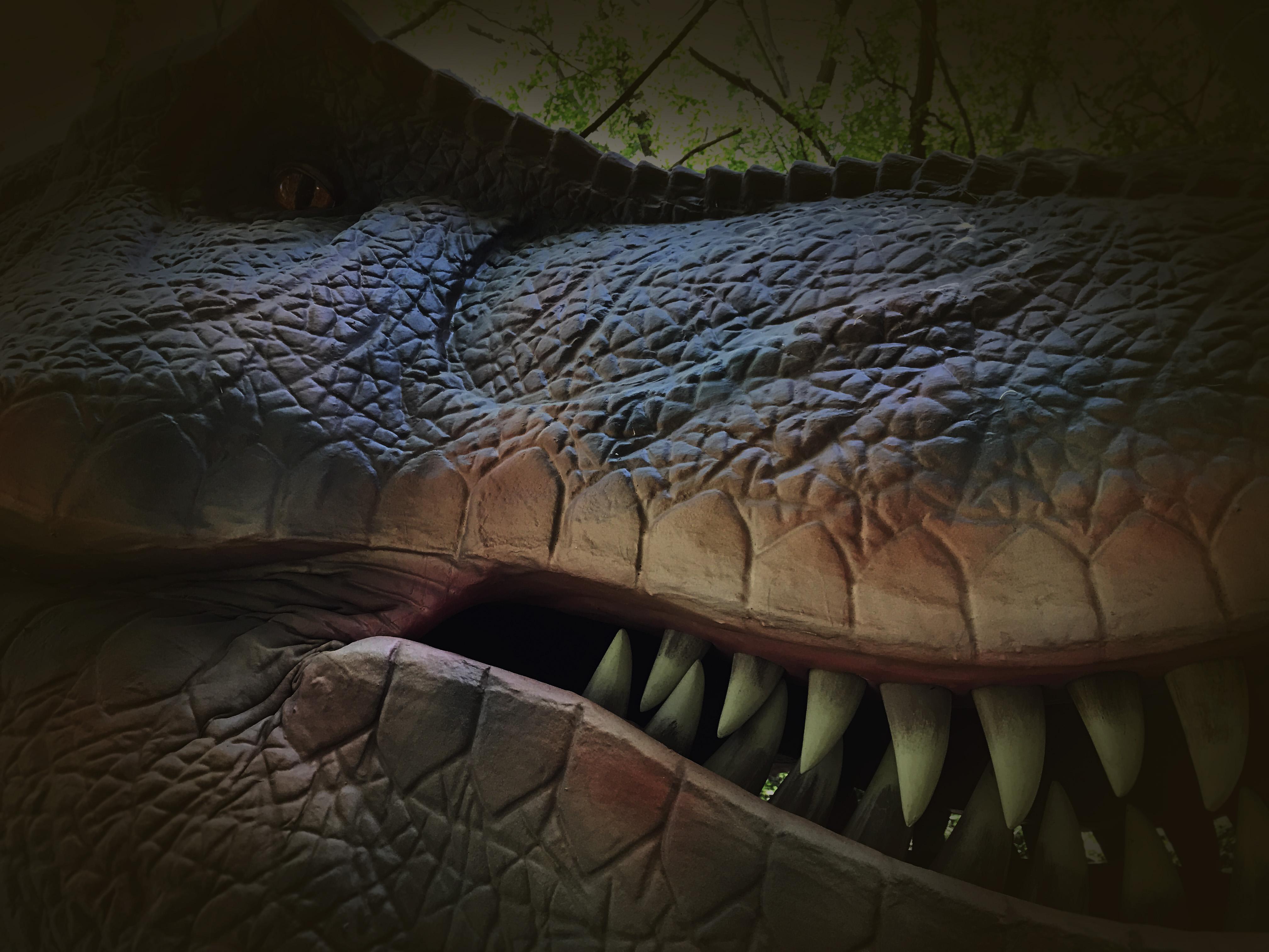 最強の肉食恐竜ティラノサウルスは獲物を狙い息を潜めています